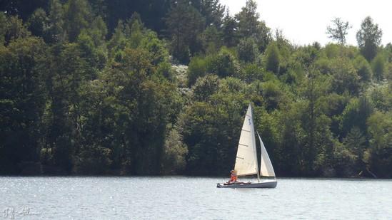 Photo fiche road-trip N° 10_108_1 - De châteaux en petites gares, de lacs en barrages - Le lac de Marcillac-la-Croisille - Marcillac-la-Croisille - 19320