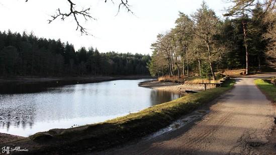 Photo fiche road-trip N° 10_65_1 - De châteaux en petites gares, de lacs en barrages - L'étang de Laborde - Gumond - 19320