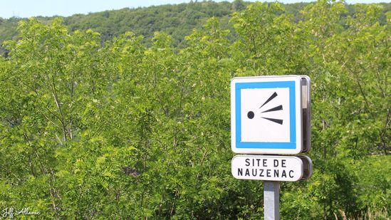 Photo fiche road-trip N° 11_1028_1 - Les gorges sauvages de la Dordogne - Panorama de Lamirande - Soursac - 19550