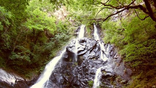 Photo fiche road-trip N° 11_80_1 - Les gorges sauvages de la Dordogne - Les cascades du Saut Sali - Soursac - 19550