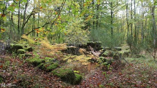 Photo fiche road-trip N° 12_1043_1 - Le pays de Ventadour - Les ruines de Montamar - Saint-Yrieix-le-Déjalat - 19300