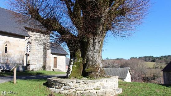 Photo fiche road-trip N° 12_1048_1 - Les portes du Périgord blanc - Le village de Bonnefond - Bonnefond - 19170