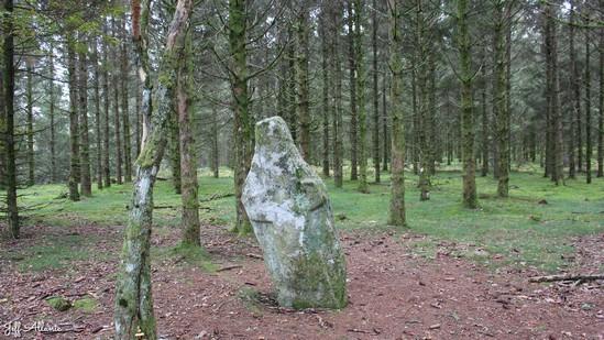 Photo fiche road-trip N° 12_397_1 - Les portes du Périgord blanc - Le menhir du Pilar - Bonnefond - 19170