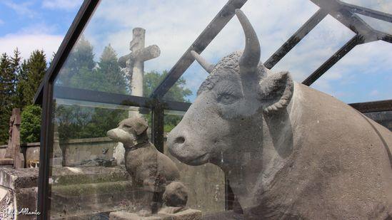 Photo fiche road-trip N° 13_2714_1 - Mystères, puissance et grandes orgues - Le caveau des animaux de Sarroux - Sarroux - St Julien - 19110
