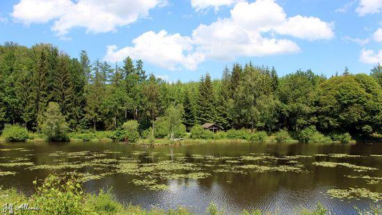 Photo fiche road-trip N° 14_1065_1 - La Corrèze plein Est c'est l'Eden - Les étangs de Roussange - Aix - 19200