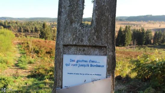 Photo fiche road-trip N° 15_401_1 - Les portes du Périgord blanc - Point de vue sur la tourbière du Longeroux - Chavagnac - 19290