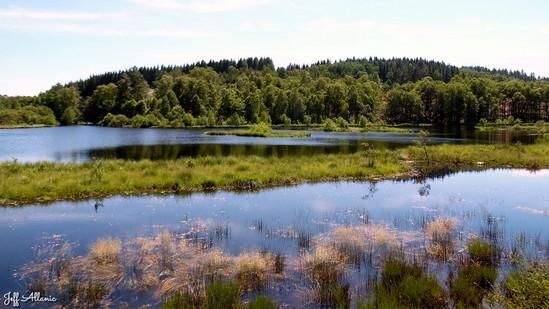 Photo fiche road-trip N° 17_238_1 - Les portes du Périgord blanc - Le lac de servières - Peyrelevade - 19290
