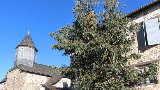 Photo fiche road-trip N° 19_2065_1 - Les portes du Périgord blanc - Le village de Gauch - Allassac - 19240