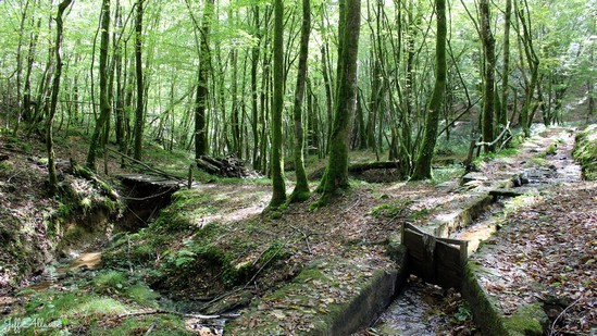 Photo fiche road-trip N° 5_518_1 - Entre vézère et Auvézère - Le canal des Chartreux - Troche - 19230