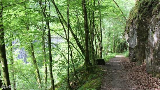 Photo fiche road-trip N° 9_96_1 - La Xaintrie médiévale - Les gorges de la Cère - Camps-Saint-Mathurin-Léobazel - 19430